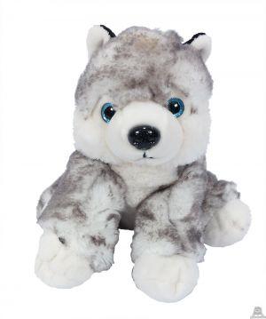 Pluche zittende Huskey wolf 20 cm.
